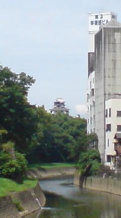 垣間見る熊本城 2 船場橋から