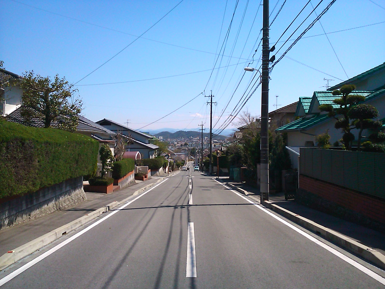 泉ヶ丘中央通り
